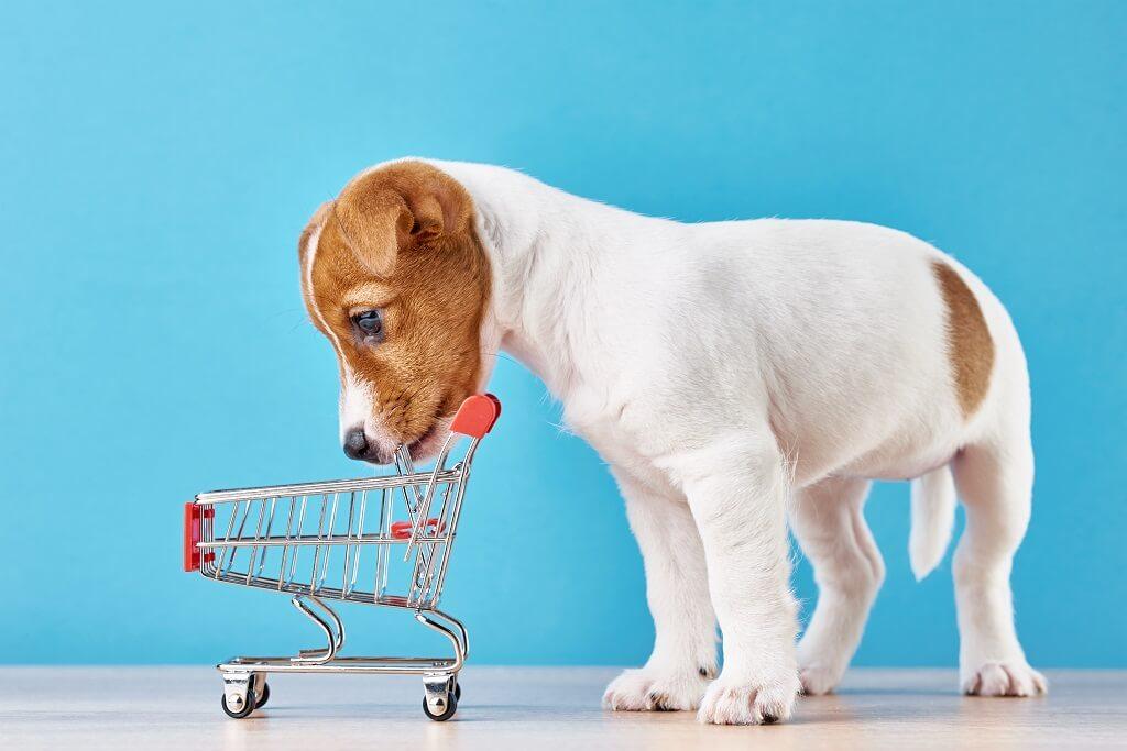 Hvad kan man købe i en dyrehandel? - TXS (2)